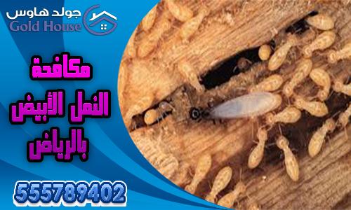 مكافحة النمل بالرياض